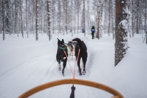 Wedding destination: get married in Lapland