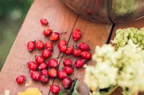 Rosehip seed oil for skincare